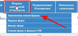 Заполнение новой формы на salyk-kz.ru